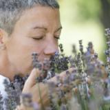 Aromatherapie- Rezepte, Ideen, Tipps und Anwendungsvideos